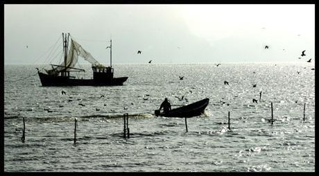 IJsselmeer visser